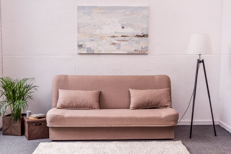 Rose couch with lamp and plant frugal living