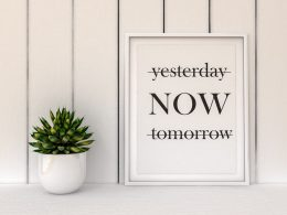 white sign with black text beside small green plant living in the present