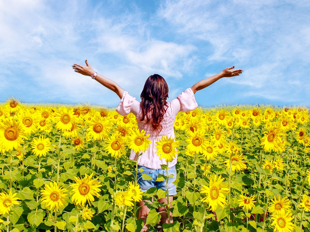 Woman standing in sunflower field with arms stretched out and blue sky in background