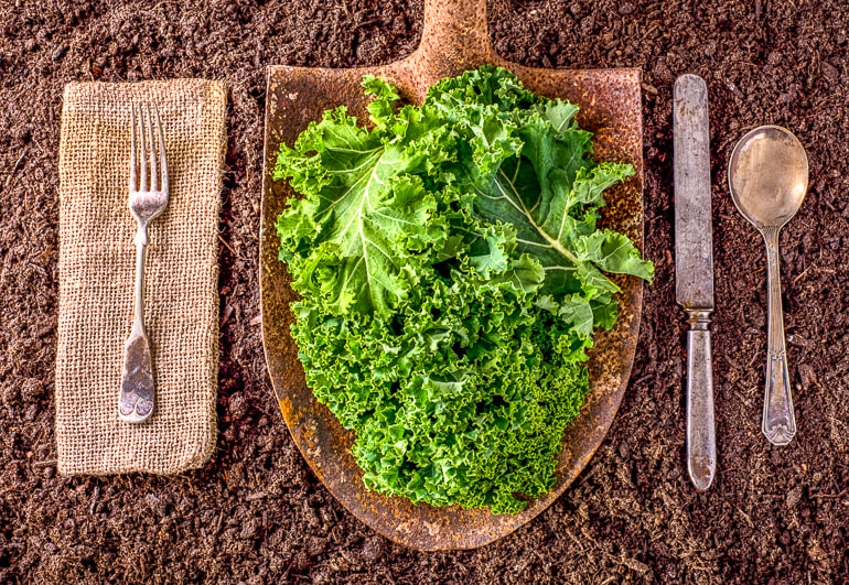 kale leaves on wooden cutting board with utensils beside