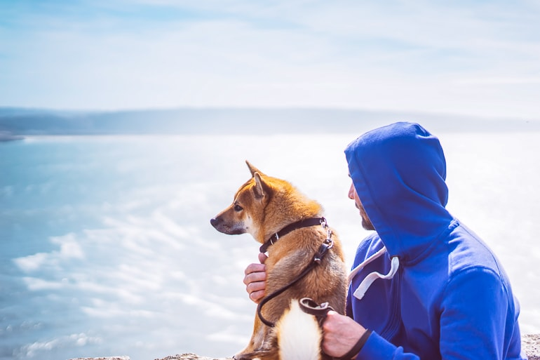 Man with blue sweater and dog with blue background