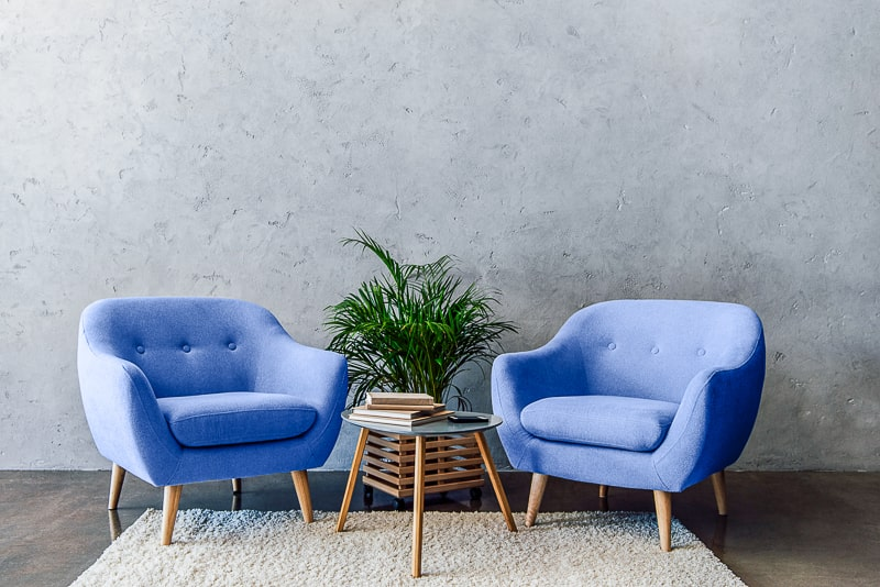blue chairs with green plant and table between on white rug
